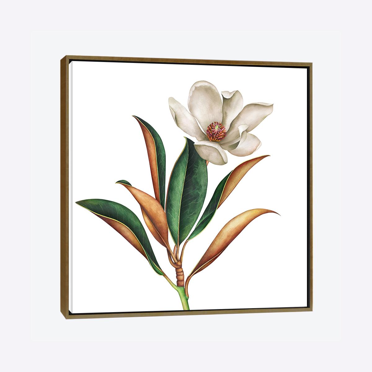 لوحات جدارية - ورد معتق - لوحات جدارية - لوحات فنية مميزة - لوحة حائط مفعمة بألوان الأزهار والروح الطبيعية التي تبعثها لوحات الأزهار الفنية حيث تعطي سلام وذوق رفيع يتناسب مع جميع أثاثكم